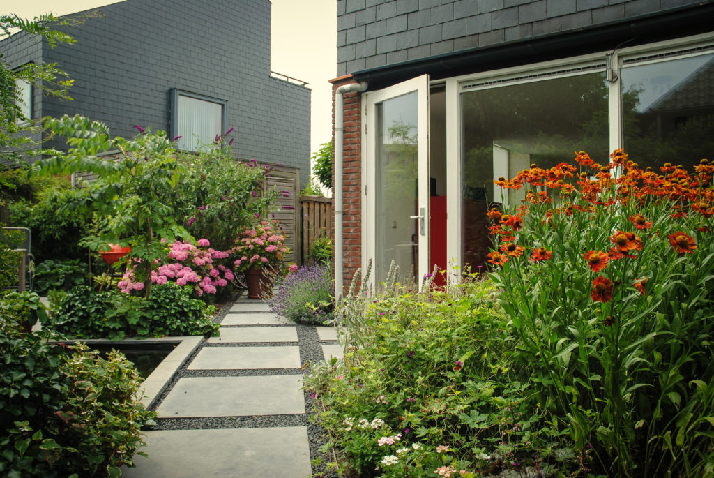Moderne Strakke Tuin In Warme Kleuren Hoveniersbedrijf Kees Koenen